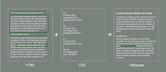 HTML and CSS create a formatted webpage.